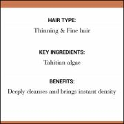 Christophe Robin Cleansing Thickening Paste with Pure Rassoul Clay and Tahitian Algae