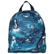 Molo Backpack Antarctica One Size